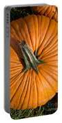 Pumpkin Aerial View Portable Battery Charger