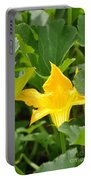 Pumpkin Flower Portable Battery Charger