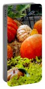 Pumpkin Harvest Portable Battery Charger by Karen Wiles
