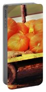 Pumpkin Load Portable Battery Charger