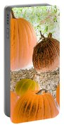 Pumpkin Patch - Photopower 1561 Portable Battery Charger