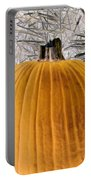 Pumpkin Patch - Photopower 1563 Portable Battery Charger