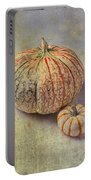 Pumpkin Textures Portable Battery Charger