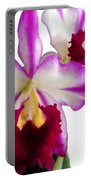 Purple And White Cattleyas Against White Space Portable Battery Charger