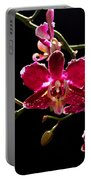 Purple And White Orchid Portable Battery Charger
