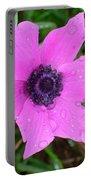 Purple Anemone - Anemone Coronaria Flower Portable Battery Charger