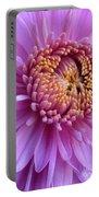 Purple Autumn Mum Portable Battery Charger