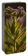 Purple Backlit Portable Battery Charger