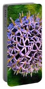 Purple Ball Portable Battery Charger