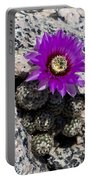 Purple Cactus Flower Portable Battery Charger