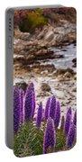 Purple California Coastline Portable Battery Charger