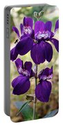 Purple Chinese Houses In Park Sierra-ca Portable Battery Charger