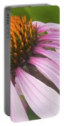 Purple Cone Flower Echinacea Portable Battery Charger