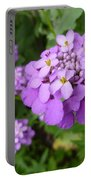 Purple Eye Candy That Pops Portable Battery Charger
