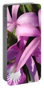 Purple Flock Of Cattleya Orchids Portable Battery Charger
