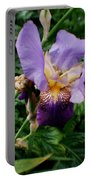 Purple Flower After Rainfall Portable Battery Charger by Doc Braham