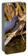 Purple Gallinule 3 Portable Battery Charger