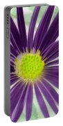 Purple Haze - Photopower 2858 Portable Battery Charger