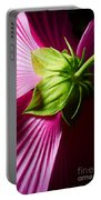Purple Hibiscus Shot From Behind. Portable Battery Charger