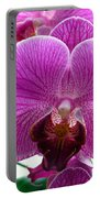 Purple Infusion Portable Battery Charger