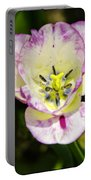 Purple Lace Tulip Time Portable Battery Charger