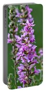 Purple Loosestrife Portable Battery Charger