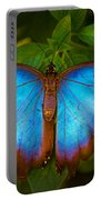 Purple Morpho Butterfly Portable Battery Charger