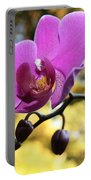 Purple Orchid In September Sun Portable Battery Charger