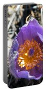 Purple Pan Gold Portable Battery Charger