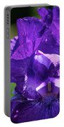 Purple Pandora Portable Battery Charger