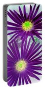 Purple Passion - Photopower 1604 Portable Battery Charger