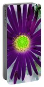 Purple Passion - Photopower 1605 Portable Battery Charger