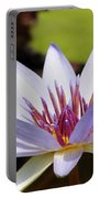 Purple Rhonda Kay Waterlily Above The Pond Portable Battery Charger