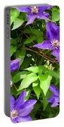 Purple Rush Portable Battery Charger