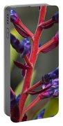 Purple Spike Bromeliad Portable Battery Charger