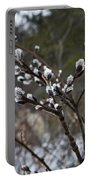 Pussy Willow In The Rain Portable Battery Charger
