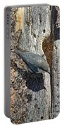 Pygmy Nuthatch At Nest Portable Battery Charger