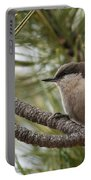 Pygmy Nuthatch Portable Battery Charger