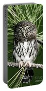 Pygmy Owl Portable Battery Charger