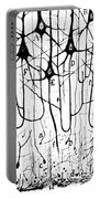Pyramidal Cells Illustrated By Cajal Portable Battery Charger