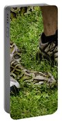 Python Snake In The Grass And Running Shoes Portable Battery Charger