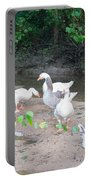 Quack Like A Duck Portable Battery Charger