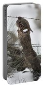 Quail Portable Battery Charger