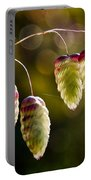 Quaking Grasses - Briza Media Portable Battery Charger