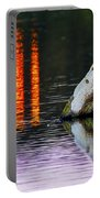 Quarry Lake Reflections Portable Battery Charger