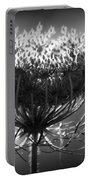 Queen Annes Lace - Bw Portable Battery Charger