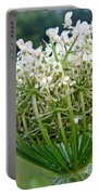 Queen Anne's Lace Flower Unfolded Portable Battery Charger