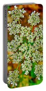Queen Anne's Lace Or Wild Carrot Near Alamo-michigan Portable Battery Charger