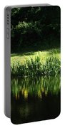 Quiet Reflection Portable Battery Charger