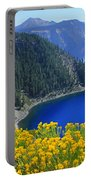 D2m5622-rabbit Brush At Crater Lake Portable Battery Charger
